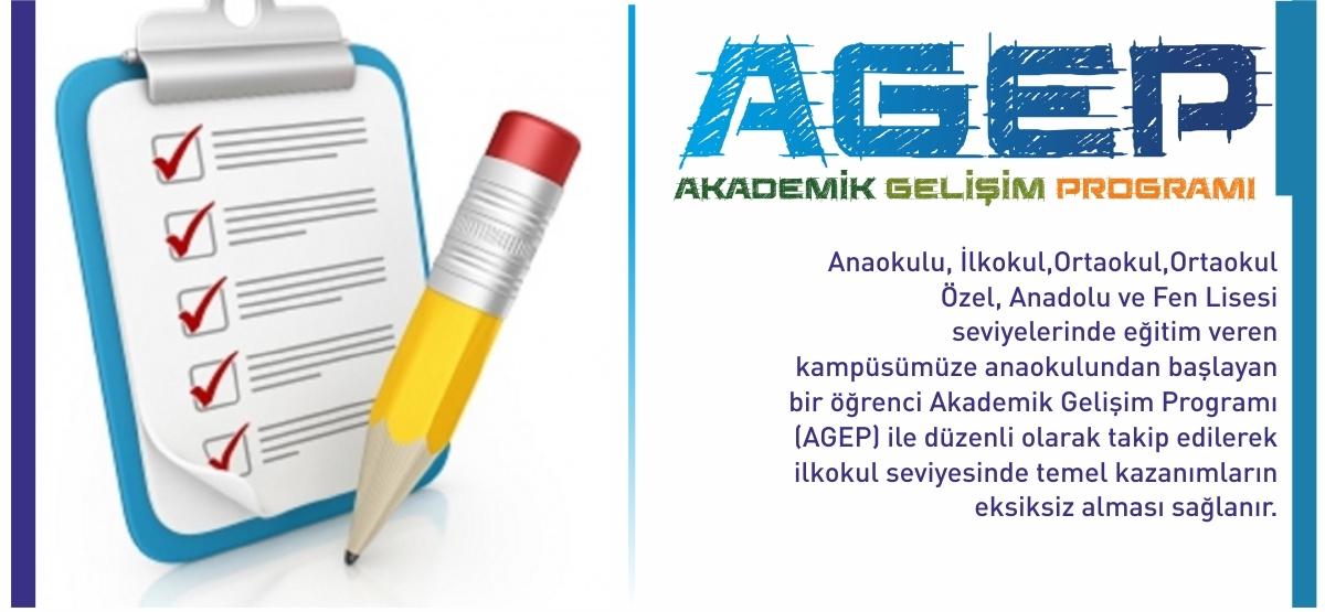 Akademik Gelişim Programı